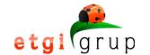 logo_etgigrup